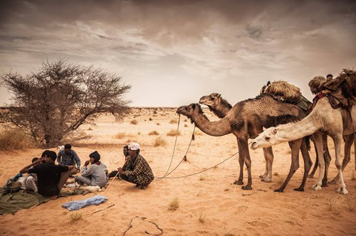 Hope for Mauritanian desert economy  for there tourists retu