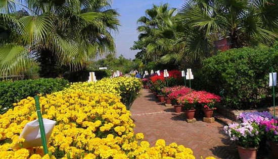 Delhi Garden Tourism Festival