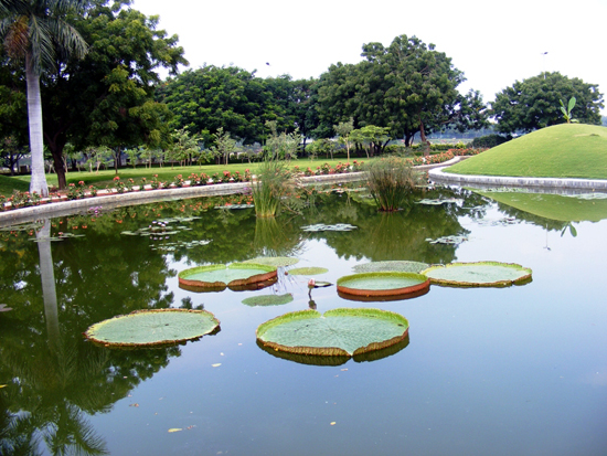 Rabindra Sarobar Lake Kolkata