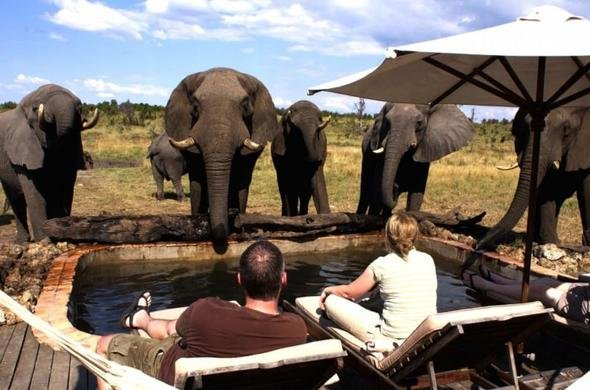 Six Day Hwange National Park And Victoria Falls Co