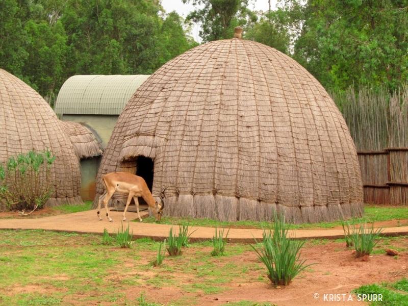 Mlilwane Wildlife Sanctua