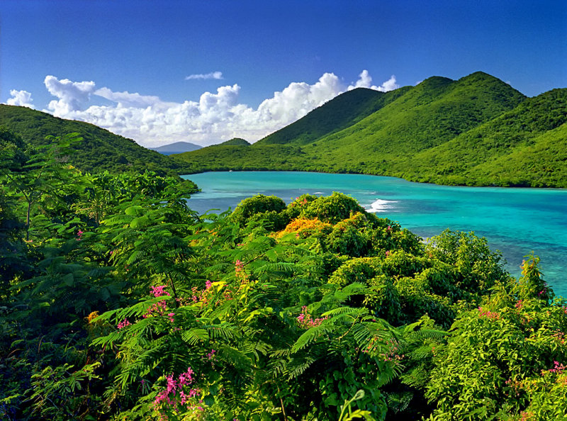 Virgin Islands National P