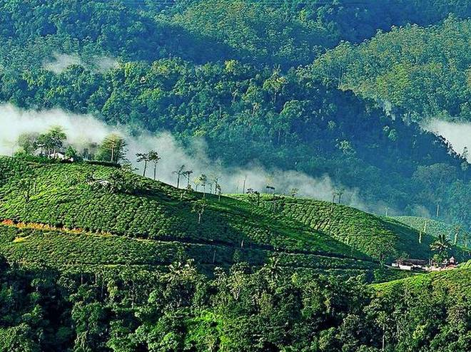 How Much Does A Trip To Kerala Cost You?
