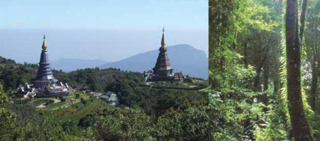 Doi Inthanon, Thailand, the back way