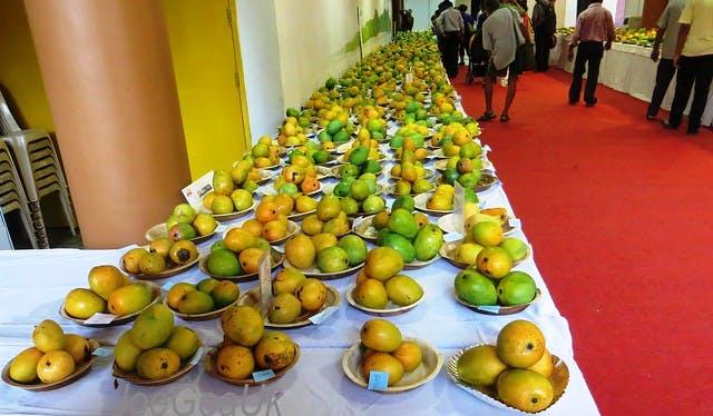 Mango Festival 2019, Delhi Haa
