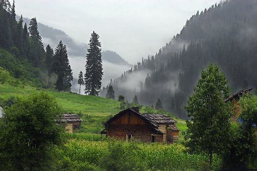 SPECIAL TOUR PACKAGE FOR KASHMIR