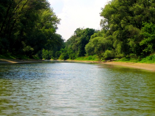 Donau Auen Hainburg