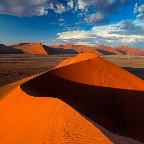 Wandering the Surreal Planes of Sossusvlei