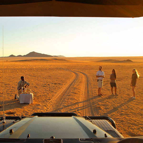 Safari Game Drive in the Sossusvlei