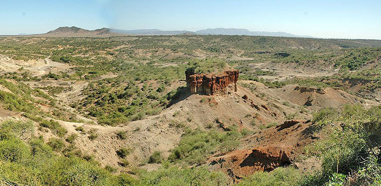 Discover Olduvai Gorge and Laetoli