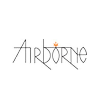 Airborne Travels Pvt. Ltd