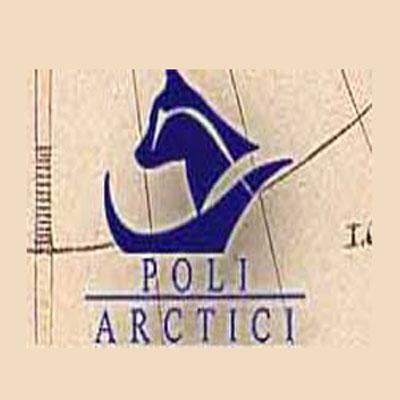 Poli Arctici