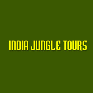 India Jungle Tours - Delh