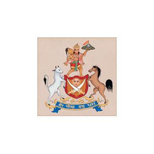 Hotel Castle Mandawa Pvt. Ltd
