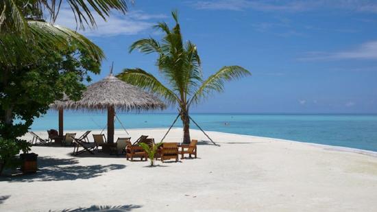 Alimatha Island Maldives