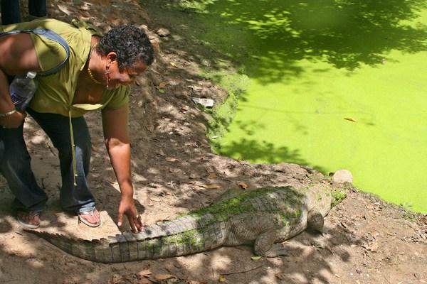 Kachikally Sacred Crocodile Pool