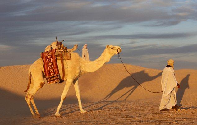 Tunisia sees record number of British visitors