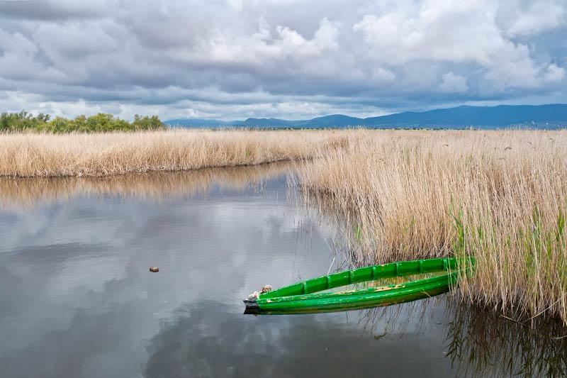 What to See Around Daimiel Spain