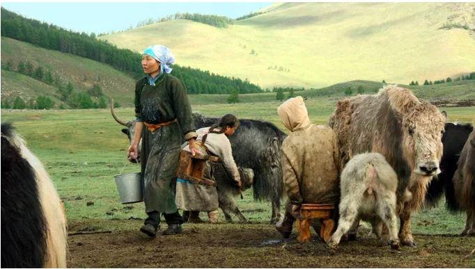 10 REASONS TO TRAVEL TO MONGOLIA