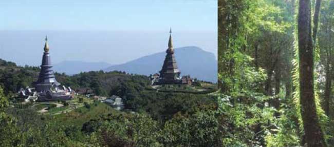 Doi Inthanon, Thailand, the back way