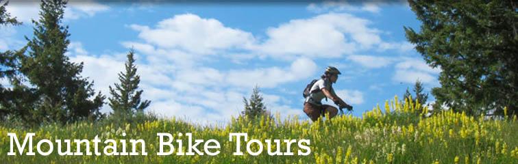 Blue Mountains Mountain Bike Adventure Tour