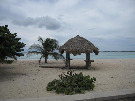 Palapas-at-baby-beach